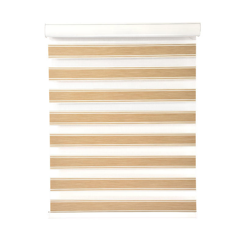 horizental zebra window coverings motorized house-2