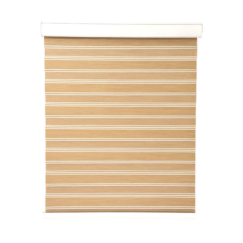 horizental zebra window coverings motorized house-1