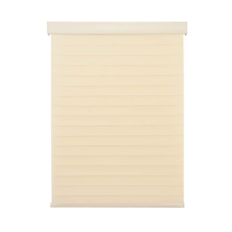 New horizontal sheer blinds french windows house-2